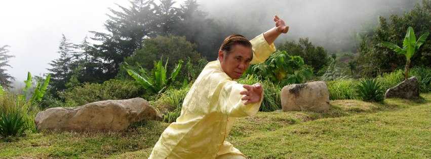 Grandmaster Wong Kiew Kit performing the kung fu pattern 'Dark Dragon Draws Water'